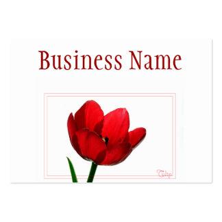 Tarjeta de visita roja del tulipán