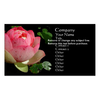 Tarjeta de visita rosada del lirio de agua