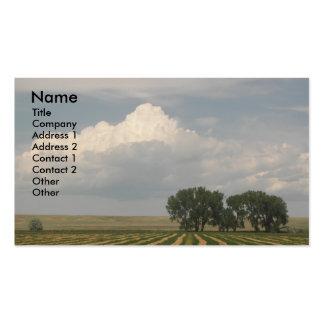 Tarjeta de visita rural de la foto del paisaje