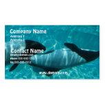 Tarjeta de visita subacuática de la ballena