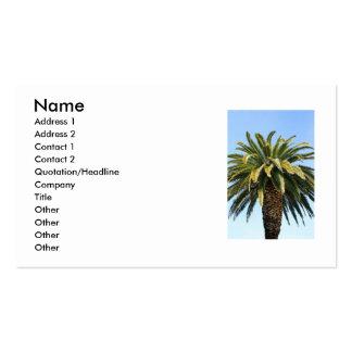 Tarjeta de visita tropical de la palmera
