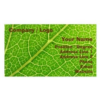 Tarjeta de visita verde de la hoja