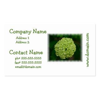 Tarjeta de visita verde del Hydrangea