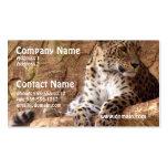 Tarjeta de visita vigilante del leopardo