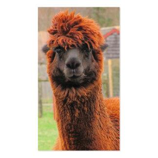 Tarjeta de visitas curiosa del ~ de la alpaca tarjetas de visita