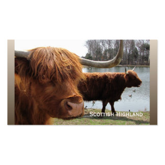 Tarjeta de visitas escocesa del ~ del ganado de la tarjetas de visita