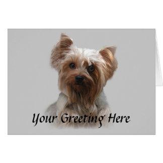 Tarjeta de Yorkshire Terrier