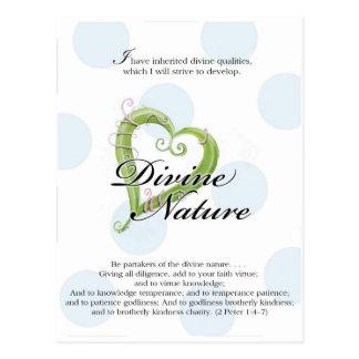Tarjeta de YW - naturaleza divina Tarjeta Postal