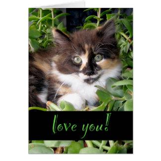 Tarjeta del amor del gato