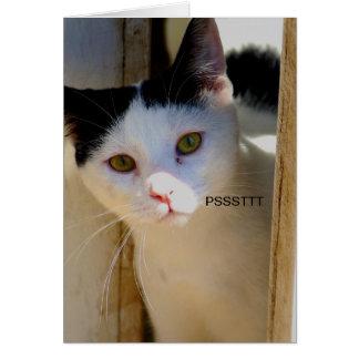 Tarjeta del amor U de Psstt I con el gatito
