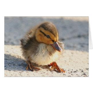 Tarjeta del anadón del pato del bebé