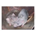 Tarjeta del aniversario de la rata del mascota