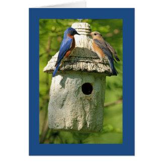 tarjeta del aniversario del bluebird
