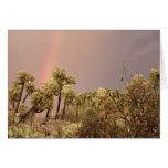 Tarjeta del arco iris del desierto