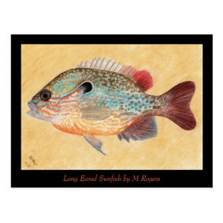 Tarjeta del arte del Sunfish