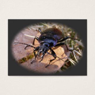 Tarjeta del ATC del ~ del escarabajo de tierra Tarjetas De Visita Grandes