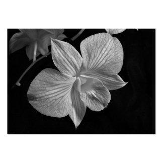 Tarjeta del ATC del flor de la orquídea del Dendro Plantilla De Tarjeta De Visita