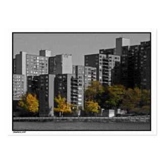 Tarjeta del ATC del otoño de la isla de NYC Roosev Plantilla De Tarjeta De Negocio