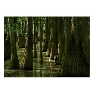 Tarjeta del ATC del pantano de Cypress Plantilla De Tarjeta De Visita