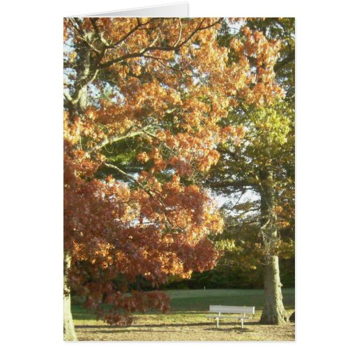 Tarjeta del banco del otoño