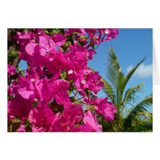 Tarjeta del Bougainvillea y de la palmera