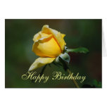Tarjeta del brote del rosa amarillo del feliz cump