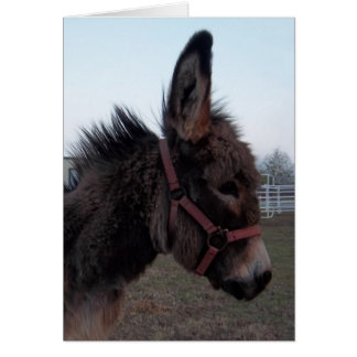 ¡Tarjeta del burro - modifiqúela para requisitos p Tarjeta De Felicitación