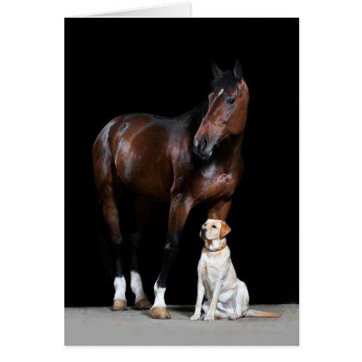Tarjeta del caballo