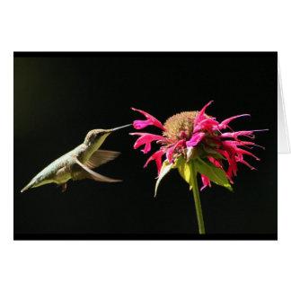 Tarjeta del colibrí que piensa en usted