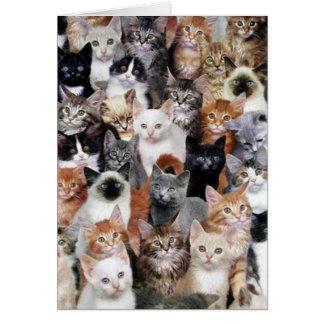 Tarjeta del collage del gato