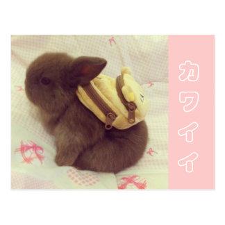 tarjeta del conejito de Kawaii del カワイイバニーカード Postales