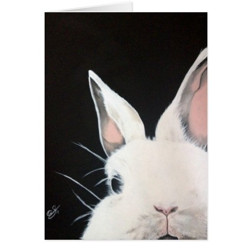 Tarjeta del conejo