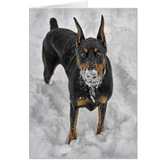 Tarjeta del cono de la nieve del Doberman