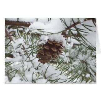 Tarjeta del cono del pino Nevado