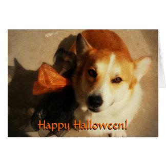 Tarjeta del Corgi de Halloween