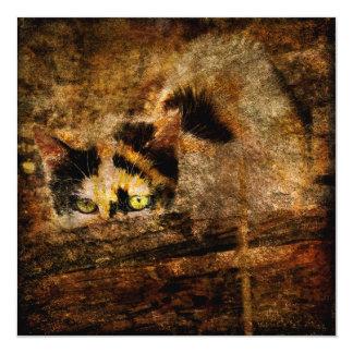 """Tarjeta del cuadrado del gato de calicó de Mia Invitación 5.25"""" X 5.25"""""""
