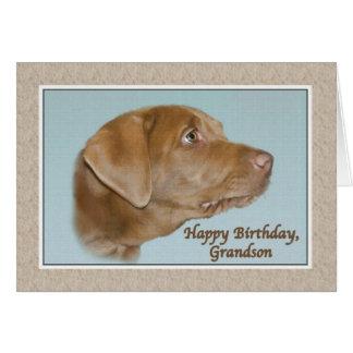 Tarjeta del cumpleaños del nieto con el perro de L