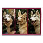 Tarjeta del día de fiesta del navidad del husky si