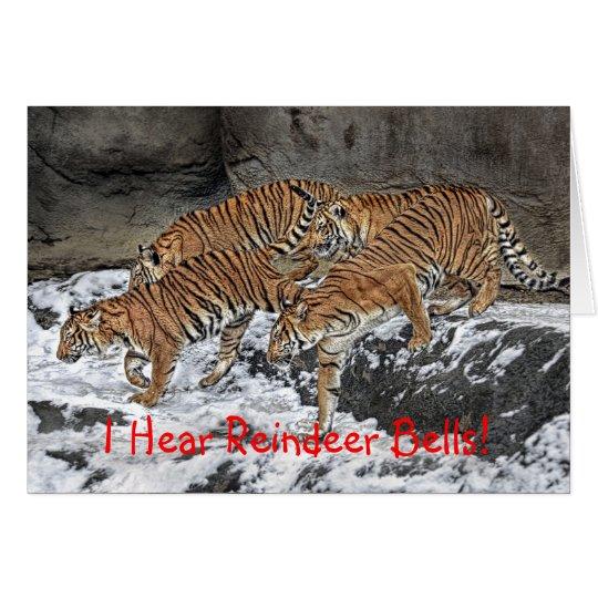 Tarjeta del día de fiesta del paquete del tigre
