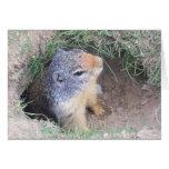 Tarjeta del día de Groundhogs