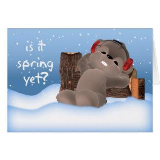 ¿Tarjeta del día de la marmota - es primavera toda Tarjeta De Felicitación