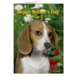 Tarjeta del día de madre del beagle