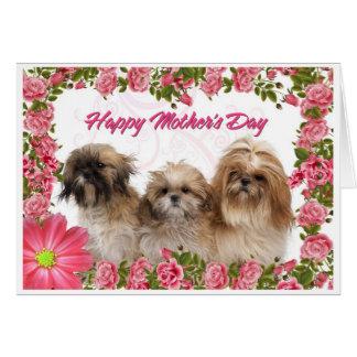 Tarjeta del día de madre - perros de Shih Tzu - fl