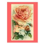 Tarjeta del día de San Valentín color de rosa y de Postal