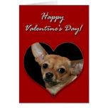 Tarjeta del día de San Valentín de la chihuahua