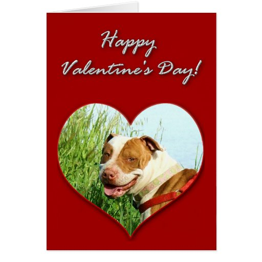 Tarjeta del día de San Valentín de Pitbull