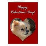 Tarjeta del día de San Valentín de Pomeranian