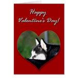 Tarjeta del día de San Valentín del husky siberian