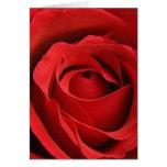 Tarjeta del día de San Valentín romántica color de