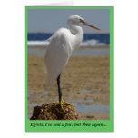 Tarjeta del Egret